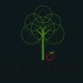 Newton IT Solutions
